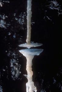grotte du tm71